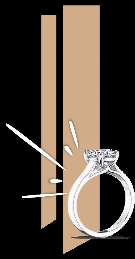 Ring 2x